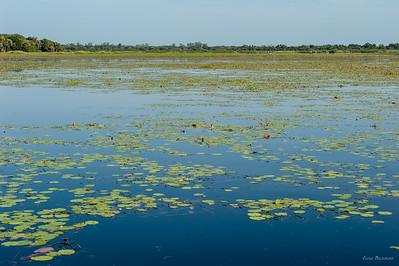 Озеро пополняется исключительно дождевой водой