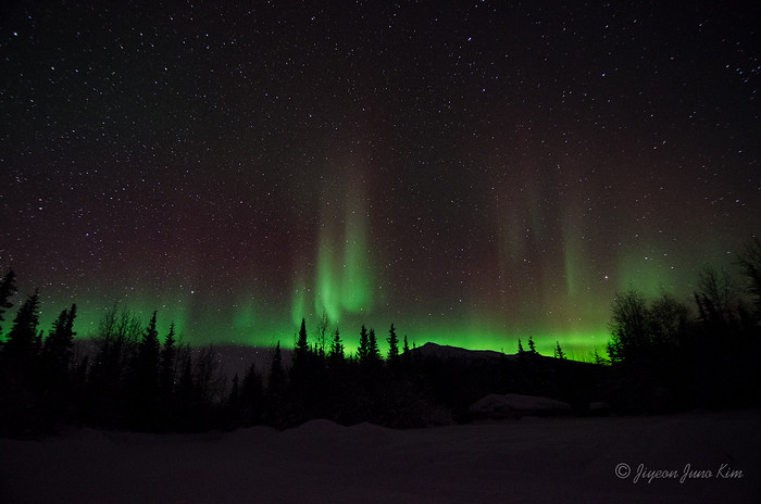Aurora Borealis seen in Wiseman