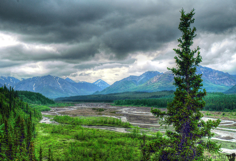 a look down the valley, Denali