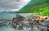 another rainy day in Valdez - on the Shoup glacier trail