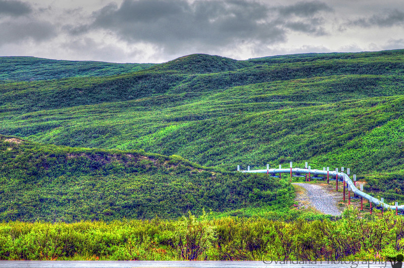 the Trans-alaska oil pipeline from Prudoe Bay to Valdez - becomes a snaky part of the alaskan landscape