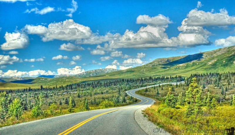 the winding road into Denali National Park, AK