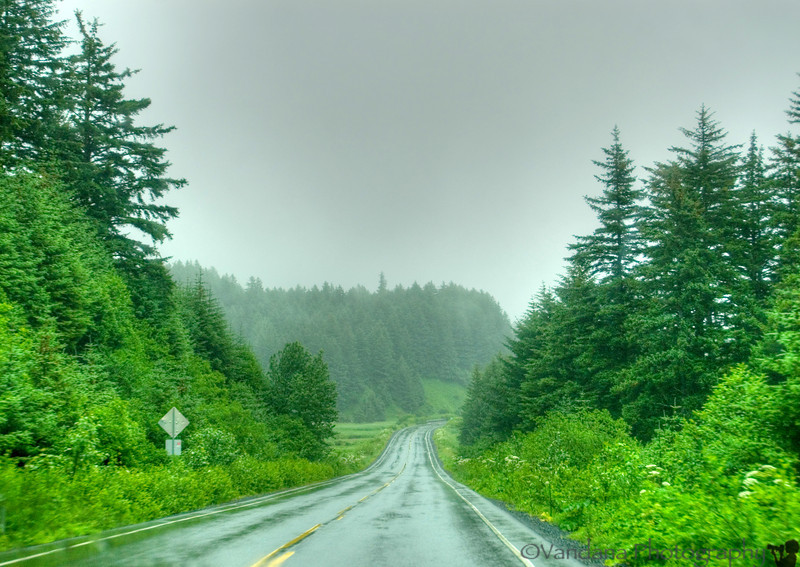 We decide to drive up to Monashka Bay. The road is wet & fogged out. Kodiak seems to be a very green, very pretty place. But we can't really see any of it, not today. Its just too foggy.