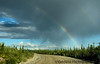 a rainbow comes up on the Denali Highway