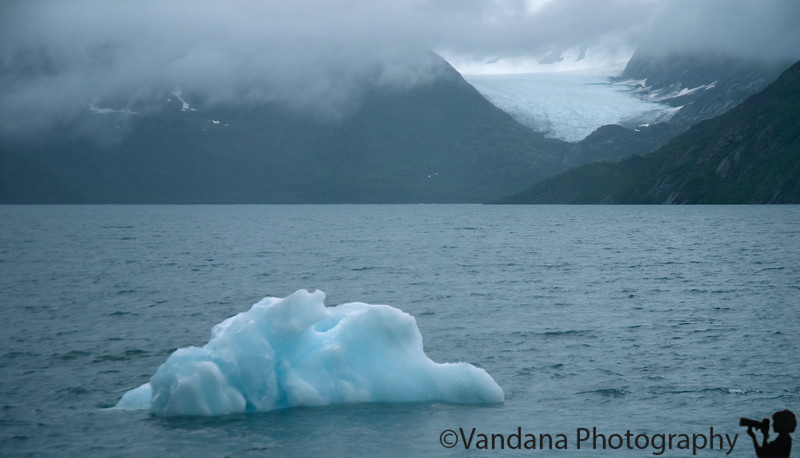 An iceberg from the glacier drifts by.