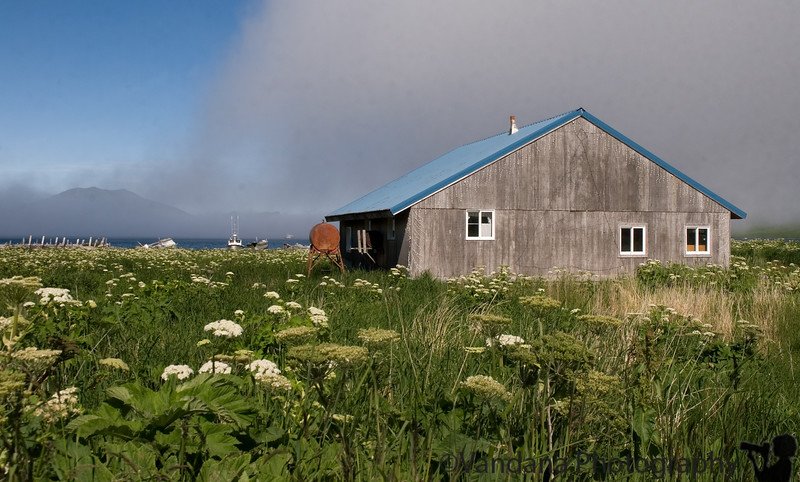 Off-the-grid houses in False Pass, Aleutian Islands, Alaska