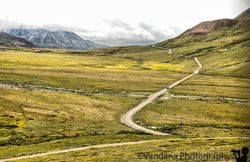 The road to Wonderlake, Denali National Park.The bus has stopped midway 'cause a bear is close-by !!
