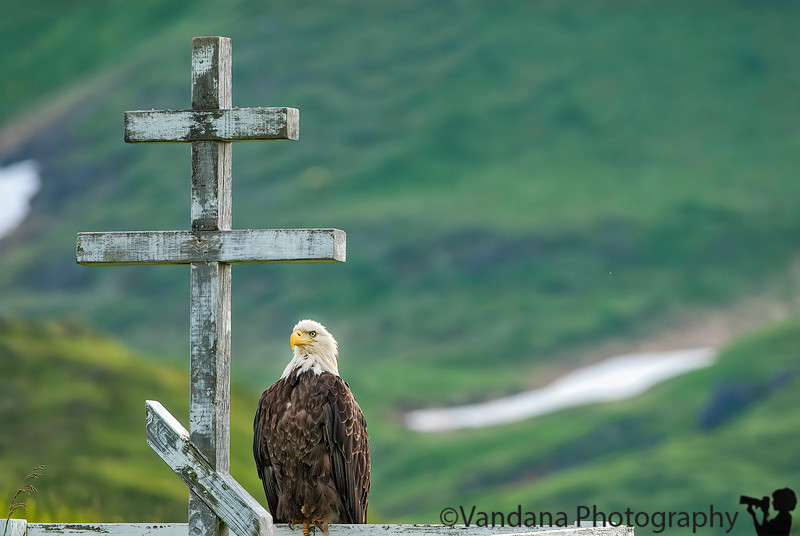 Guardian at the cross, Unalaska, Alaska