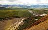 View of Denali National Park