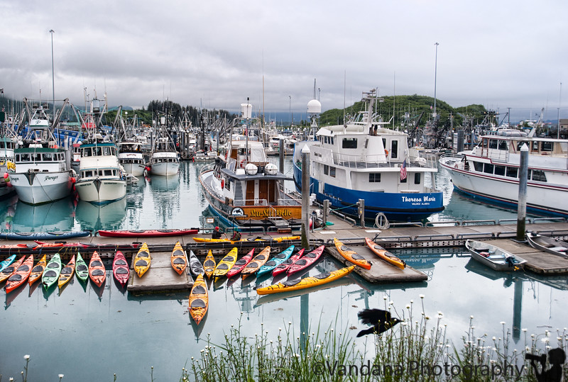 July 8, 2010 - To Valdez boat Harbor - for a 11hr Columbia Glacier Cruise