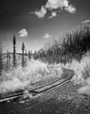 Tanana Valley Railroad vista