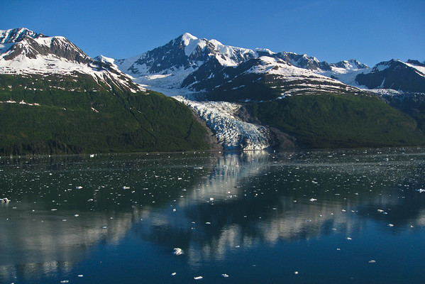 Vassar Glacier