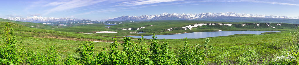 A view from Denali Highway near Paxon