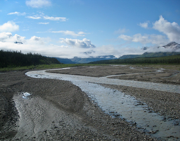 The Teklanika River; a braided river which runs through Denali National Park
