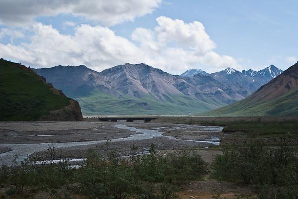 Toklat River; a braided river which runs through Denali National Park