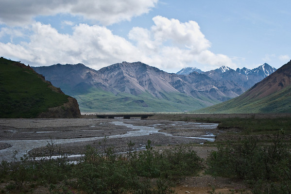 Toklat River; a braided river which runs through Denali National Park