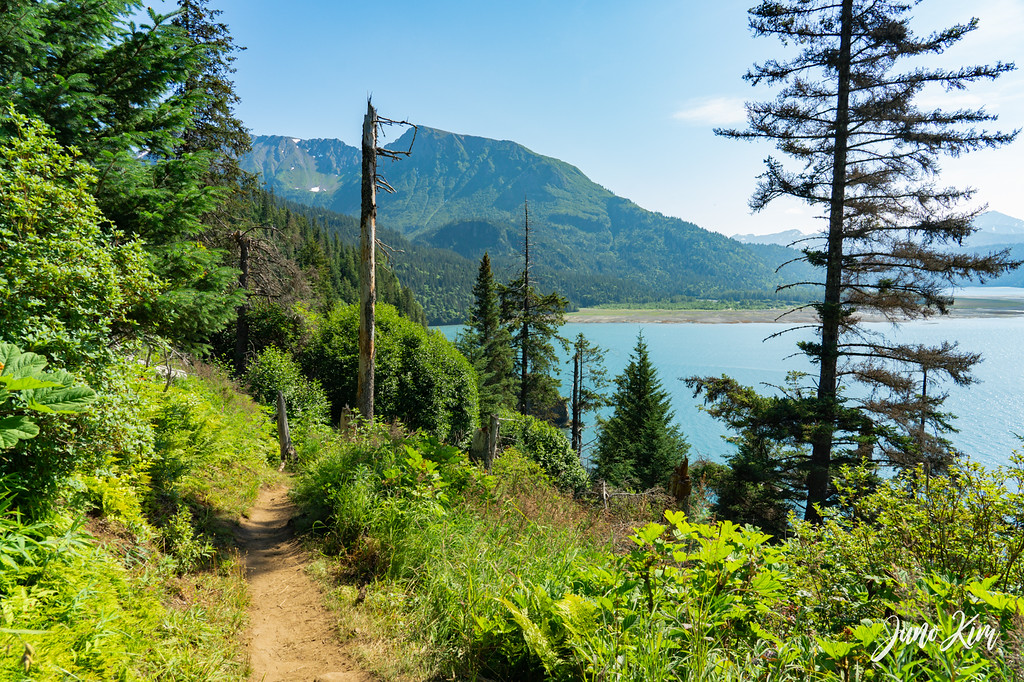 The view of Halibut Cove along the Saddle Trail