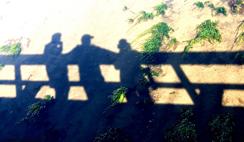 After the ship docked, we took a walk in Chignik village. That's me, Vandana & Swami looking out from a wooden bridge in Chignik.