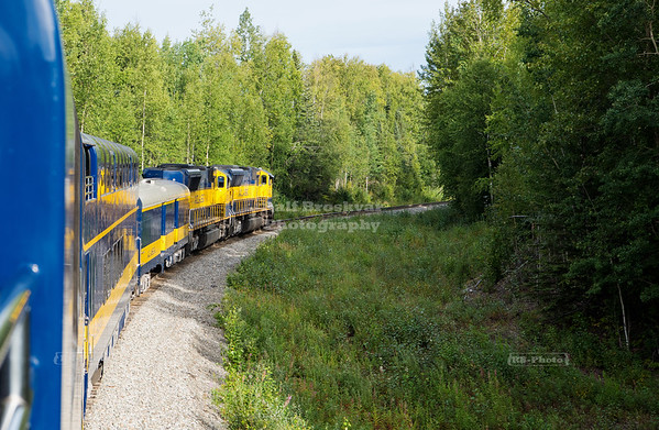 Denali Star Train