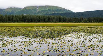South of Primrose, Alaska