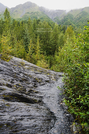 Edge of the Glacier Trail