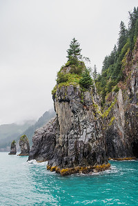 Rugged Kenai coast