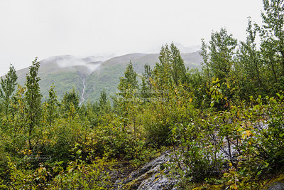Glacier Overlook Loop Trail