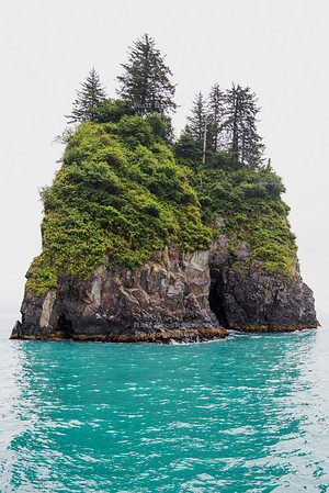 Islet in Kenai Fjords National Park
