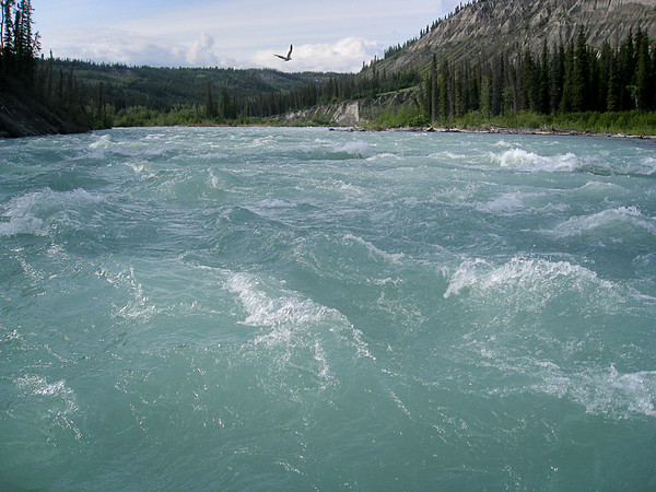 Class 3 whitewater rapids of the Klutina River