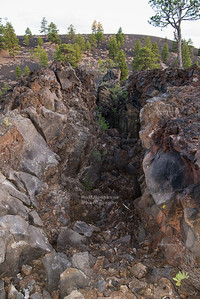 Large fissure at Sunset Crater Volcano