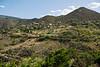 Jerome, a town in the Black Hills of Yavapai County, Arizona