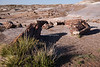 Petrified Forest National Park, Holbrook, Arizona