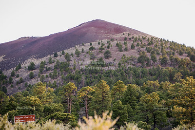 Cinder cone of the Sunset Crater Volcano
