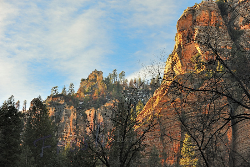 West Fork Trail - Oak Creek Canyon