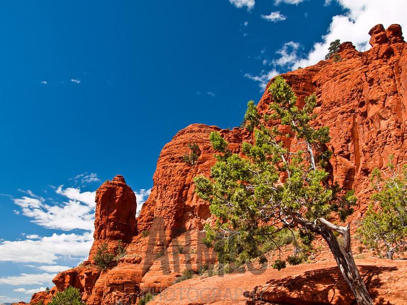 View of the Snoopy Rock from Chapel Road, Sedona, Arizona