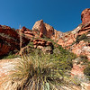 Fay Canyon, Coconino National Forest, Sedona, Arizona