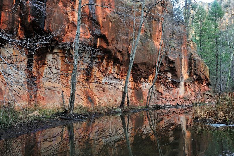 Oak Creek Canyon, Sedona AZ