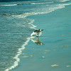 san diego - coronado island beach - 09262008_MG_5860