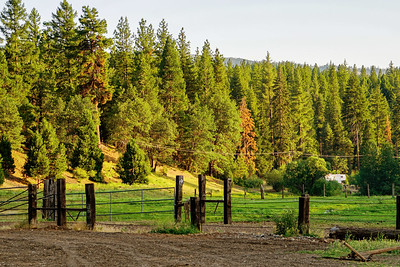 Greenhorn Creek Guest Ranch in Quincy, California