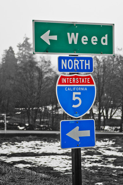 For Weed follow Highway 5