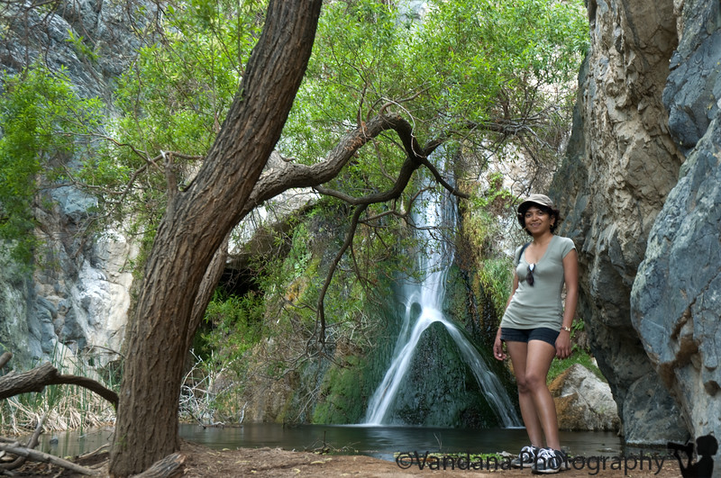 Darwin Falls @Panamint Springs, Death Valley.<br /> 2 mile dirt road + short hike over slippery rocks.