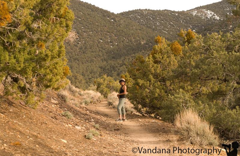 Hiking at Wildrose peak