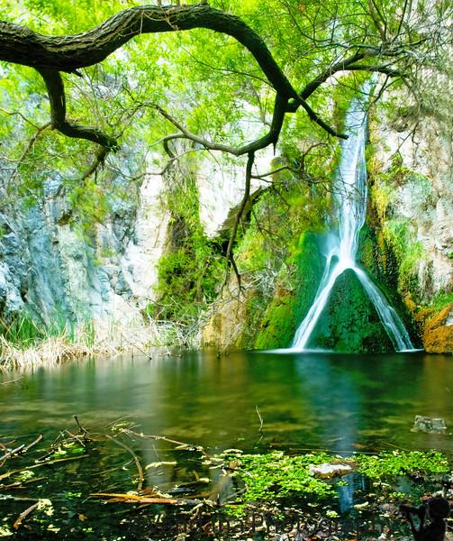 Darwin's Falls