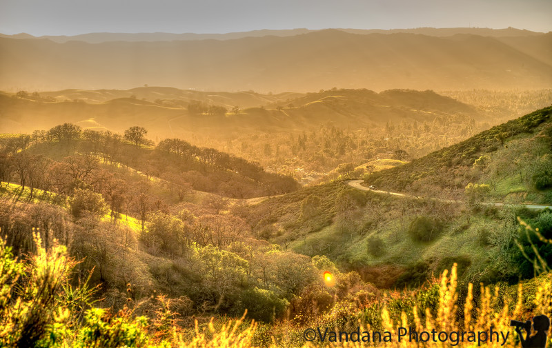 January 26, 2013 - At Mt. Diablo State Park