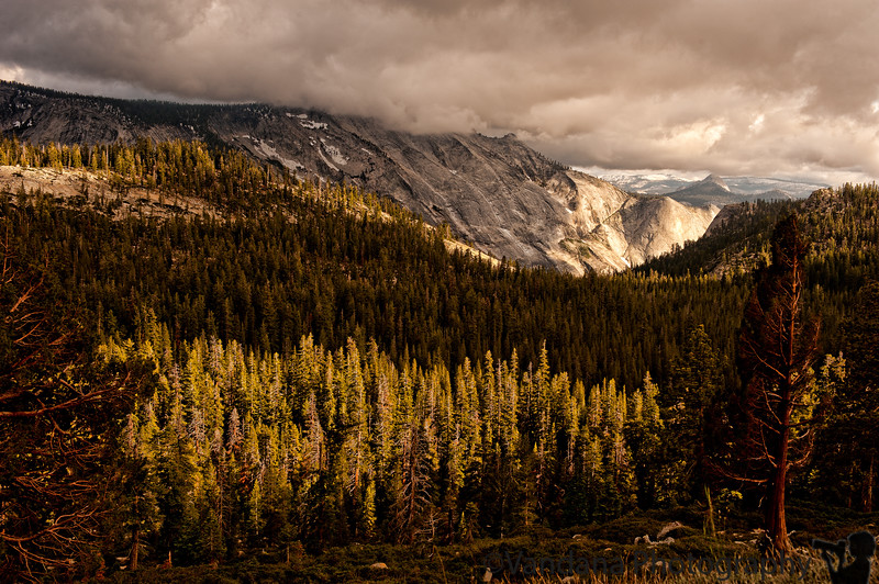 July 15, 2011 - The changing light at Yosemite,along the Tioga Pass rd