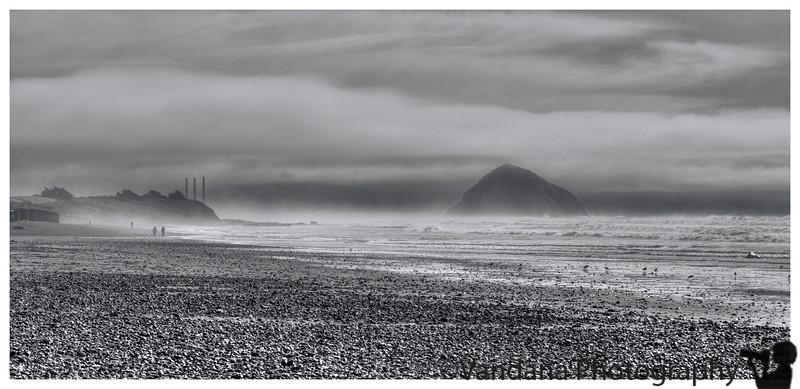 February 12, 2016 - Walking along the misty beach<br /> <br /> near Morro Bay, taken some weeks back