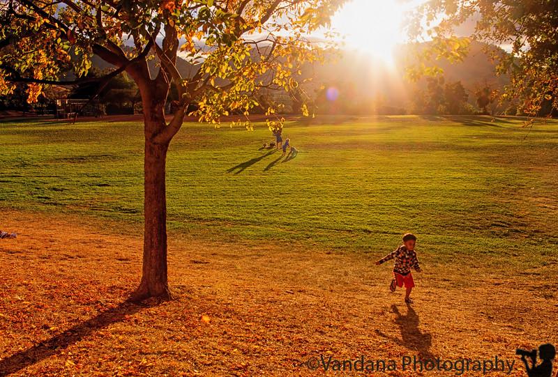 October 16, 2015 - Running in some beautiful fall light