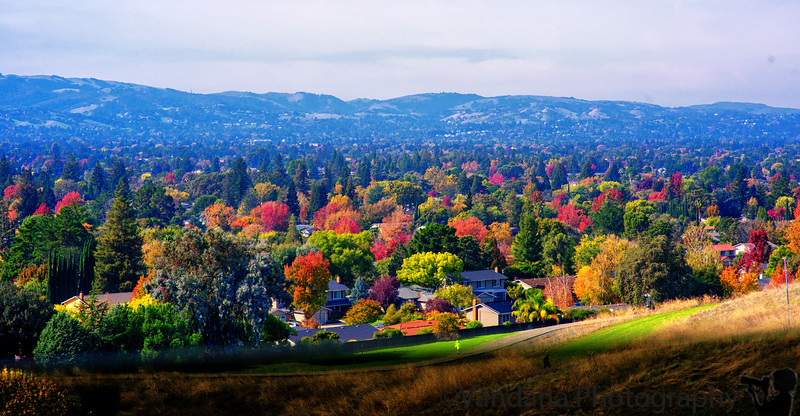 November 1, 2016 - More colors