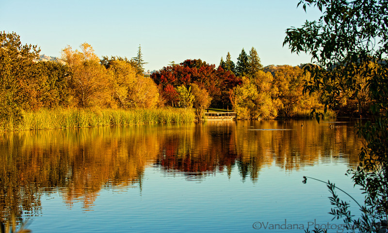 October 29, 2012 - Calm reflections<br /> <br /> Stay safe, my East Coast family and friends !