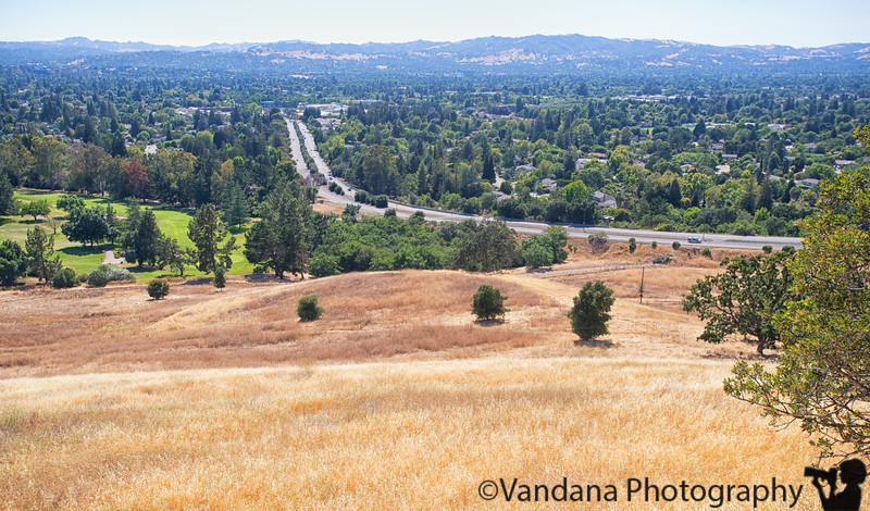 August 25, 2016 - View from Lime Ridge Open Space